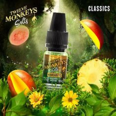 E-liquide Mangabeys Salts Twelve Monkeys